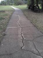 SalisburyBikewayCracks3